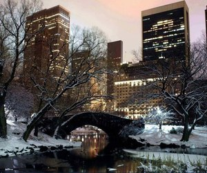Central Park, nyc, and manhattan image