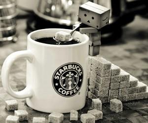 starbucks, coffee, and sugar image