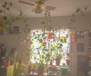 room, alternative, and plants image