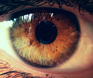 ashton kutcher, eye, and Jennifer Lawrence image