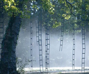 installation, ladder, and surreal image