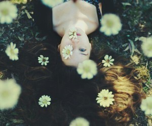 blossom, flowers, and girl image