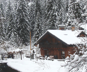 house, nature, and snow image