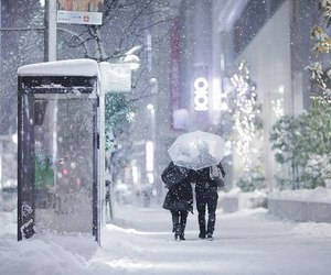 winter, snow, and tokyo image