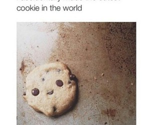 aww, cookie, and fuckin adorable! image