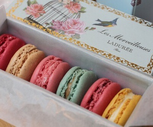 sweet, macaroons, and food image