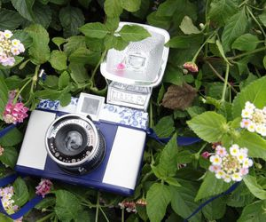 diana f+, flowers, and lomo image