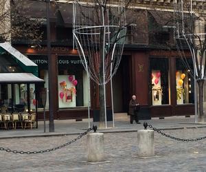 Louis Vuitton and paris image