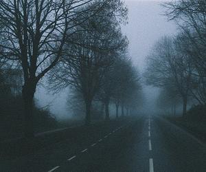tree, dark, and road image