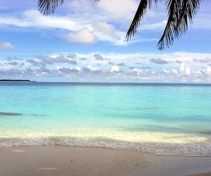 beach, classy, and Dream image