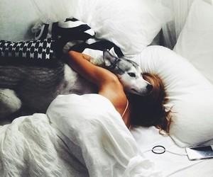 dog, girl, and bed image