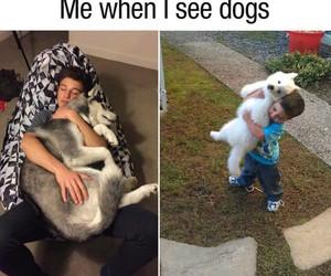 dog, me, and cameron dallas image
