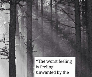 forest, image, and quote image