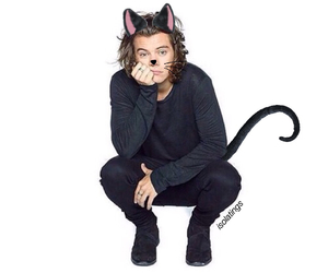 Harry Styles, one direction, and kitten image