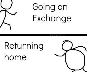 funny, exchange year, and true image