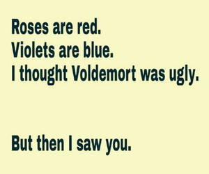 voldemort, funny, and ugly image
