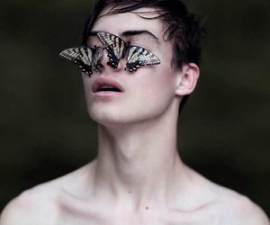 butterfly, boy, and pale image