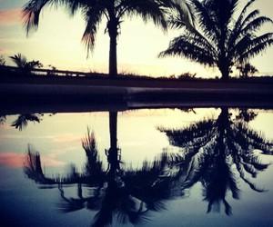 naturaleza, reflejo, and palmeras image