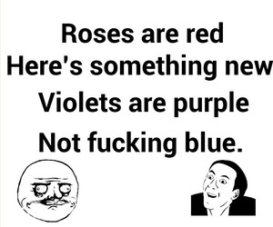 blue, roses, and lol image