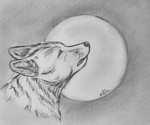 draw, moon, and wolf image