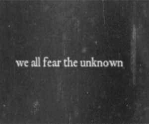 fear, unknown, and quote image