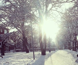 cold, snow, and sunshine image