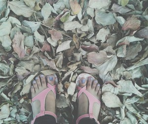 autumn, fall, and nails image