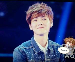 foto, exo, and luhan image