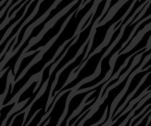 animal print, black, and sassy image