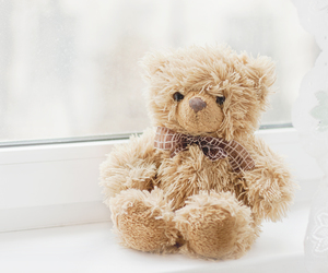 bears, dolls, and photography image