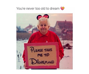 disneyland, Dream, and cute image