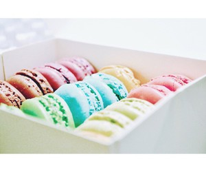 colors, food, and macarons image