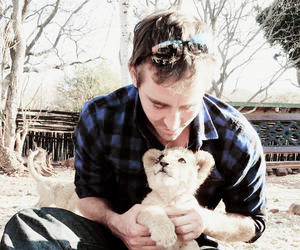 lee pace and lion image