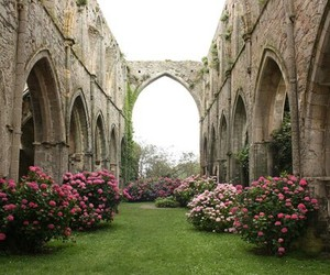church, flowers, and garden image