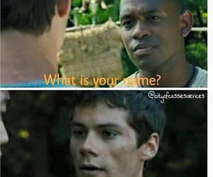 funny, alby, and maze runner image
