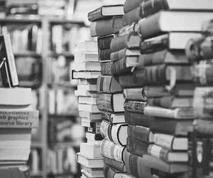 book, library, and read image