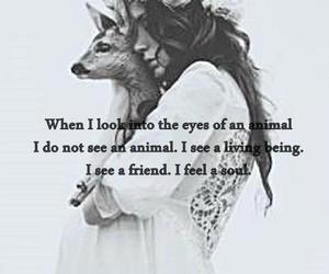 animal, boho, and freedom image