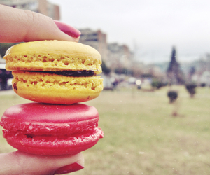 candy, cookie, and macaroon image