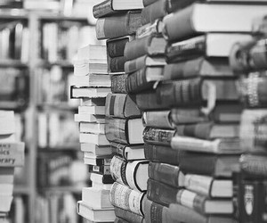 books, paradise, and reader image