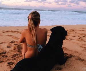 animal, best friends, and blond hair image