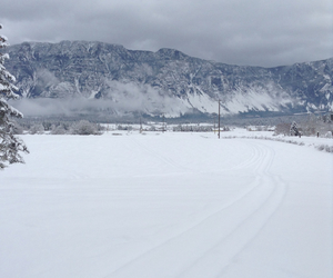 field, winter, and snow image