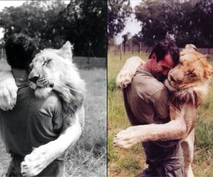 animals and love image