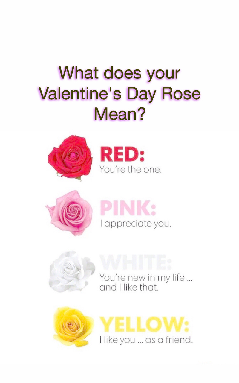 What Does Your Valentines Day Rose Mean On We Heart It
