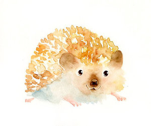 adorable, watercolours, and hedgehog image