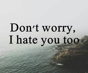 hate, quotes, and worry image