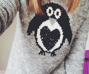 penguin and warm image