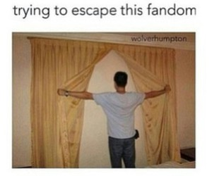 fandom, funny, and 5 seconds of summer image