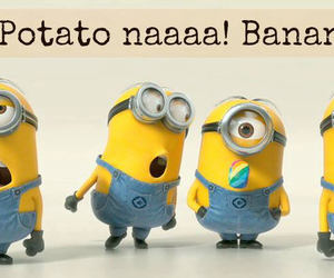 quotes and minion quotes image