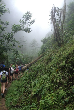 costa rica, green, and hiking image