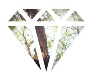 diamond, hipster, and nature image
